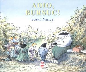 adio-bursuc_1_fullsize