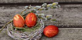 Cum am vopsit ouăle fără chimicale