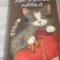 """""""Sunt o pisică mititică""""- cartea ideală pentru micii cititori"""